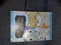 New Adult Coloring Book in Beaufort, South Carolina