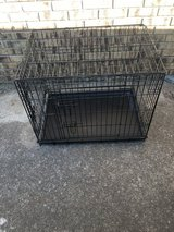 Fold down dog kennels in Fort Campbell, Kentucky