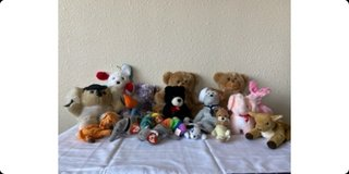 18 stuffed animals in Alamogordo, New Mexico