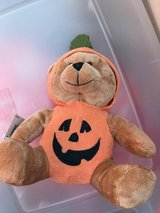 Halloween Bear in Camp Pendleton, California