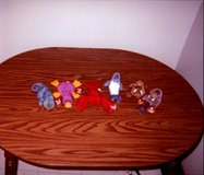 TY Beanie Baby Aquatic Animals in Tinley Park, Illinois