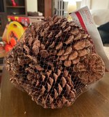 Scented Pinecones in St. Charles, Illinois