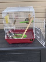 Small bird cage in Orland Park, Illinois