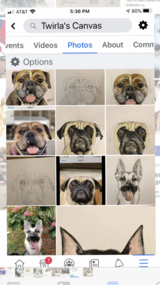 Need a pet portrait as a Christmas gift? in Leesville, Louisiana
