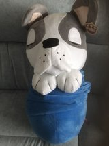 dog in a blanket new with tags in Lakenheath, UK