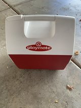 Igloo Playmate cooler in Aurora, Illinois
