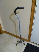Metal Quad Walking Cane in Westmont, Illinois