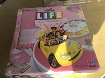 Game of Life Pink High School Edition in Naperville, Illinois