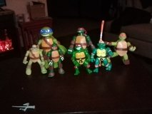 A VARIETY OF NINJA TURTLES in Yucca Valley, California