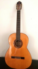 Acoustic Guitar in Clarksville, Tennessee