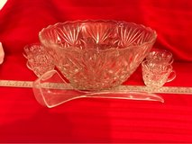 punch bowl with 11 cups in Plainfield, Illinois