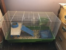 guinea pigs with cage in Bartlett, Illinois