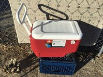 Igloo cooler, 38 quart in 29 Palms, California