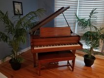 Chickering Baby Grand Piano in Plainfield, Illinois