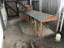 Chicken coup and 4 egg laying chickens in Fairfield, California