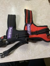 Dog Harnesses in Fairfield, California