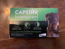 Capstar for Dogs in Beaufort, South Carolina
