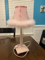 Cute Pink Lamp in Naperville, Illinois
