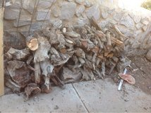 Mesquite firewood in Alamogordo, New Mexico