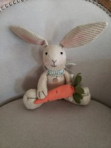 NEW Plush Easter Bunny in Chicago, Illinois