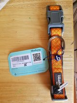 Orange dog collar by Blueberry Pet Med dogs in Clarksville, Tennessee