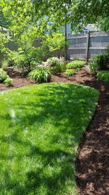 Spring clean up, mulch, aeration ,seeding, planting, trimming in Naperville, Illinois