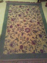 Just back from cleaners 48X70 Rug in Naperville, Illinois