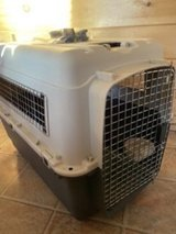 XL Pet travel Crate Airline Approved in Tacoma, Washington