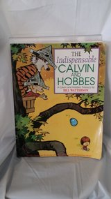 Calvin and Hobbs - Comic Book (Style) in Naperville, Illinois