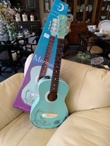 Luna Mermaid Guitar in Naperville, Illinois