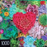 Jigsaw puzzle- Succulent Love in Naperville, Illinois