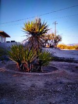 need some work done in 29 Palms, California