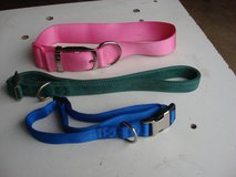 YOUR CHOICE OF PET COLLARS in Naperville, Illinois