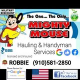 Mighty Mouse hauling & handyman services in Camp Lejeune, North Carolina