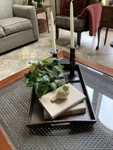 Reduced to $25 tray with accessories for coffee  table in Kingwood, Texas