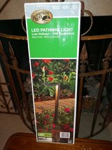 Led Low Voltage Pathway light in Kingwood, Texas