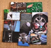 Okinawan cats postcards for helping cats in Okinawa, Japan