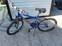 "24"" Roadmaster bicycle in Naperville, Illinois"