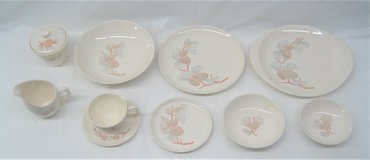 VINTAGE STETSON CHINA - COMPLETE SERVICE FOR 12 - NEW IN BOX - PINE in Naperville, Illinois