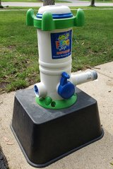 Pool Leap Frog Mineral Sanitizing System in St. Charles, Illinois