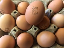 This weeks eggs in Alamogordo, New Mexico