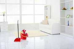 House Cleaning services, Local Moving, Trash pickup, yard and pressure Washing in Ramstein, Germany
