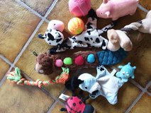 lots of dog toys in Ramstein, Germany
