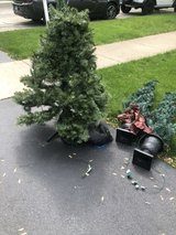 3gt Multi Color Christmas Tree in Naperville, Illinois