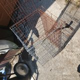 cage for small to med animal in Camp Lejeune, North Carolina