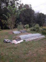 5 Acre Permaculture Homestead in Conroe, Texas