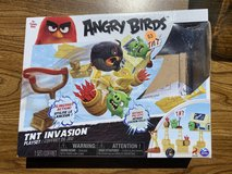 Angry Birds Game in Joliet, Illinois