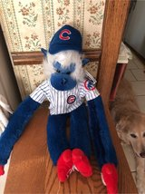 Cubs forever blue and white monkey in Naperville, Illinois