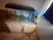 Fish Tank, supplies, and stand in Ramstein, Germany