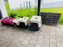 Various sized pet carriers in Ramstein, Germany